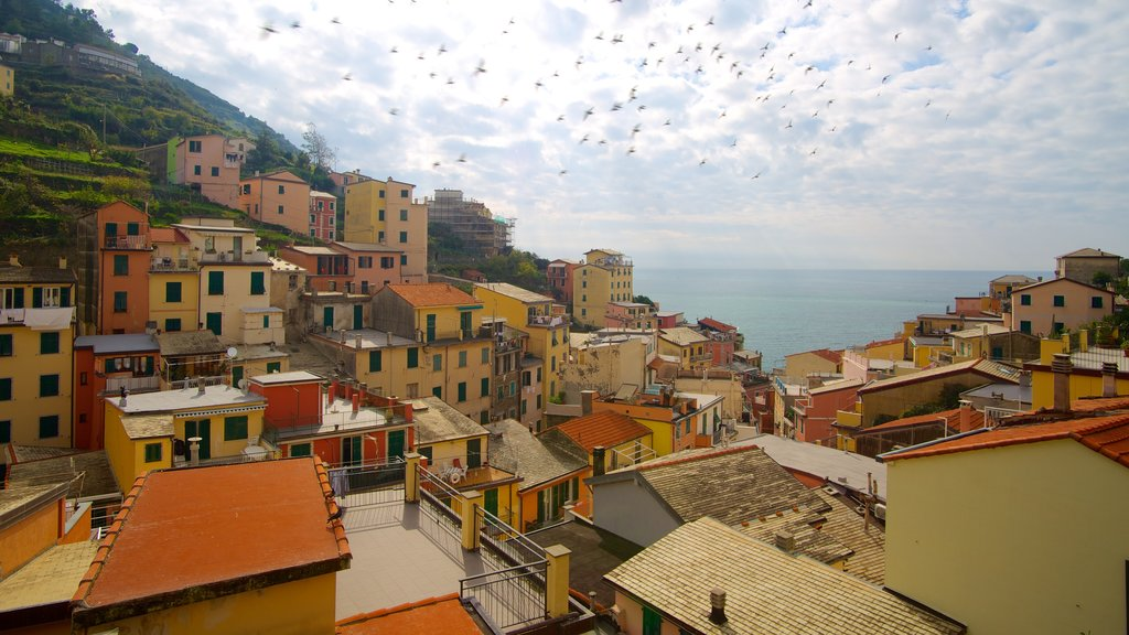 Riomaggiore which includes a small town or village, heritage architecture and a house