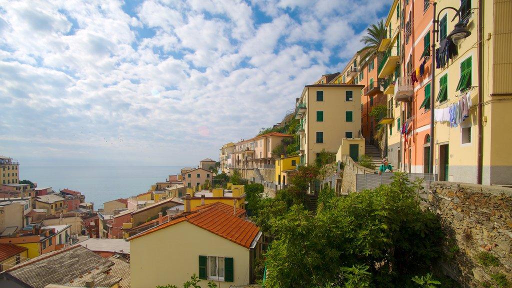 Riomaggiore showing a coastal town
