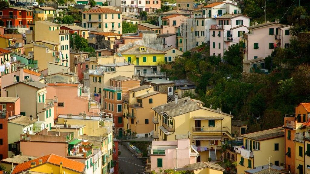 Riomaggiore which includes a city