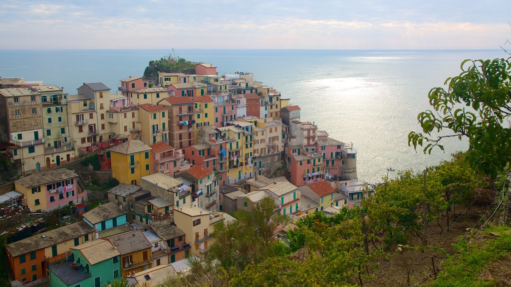 Manarola showing general coastal views and a coastal town