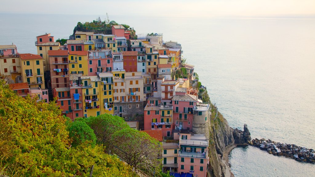 Manarola showing rugged coastline and a coastal town