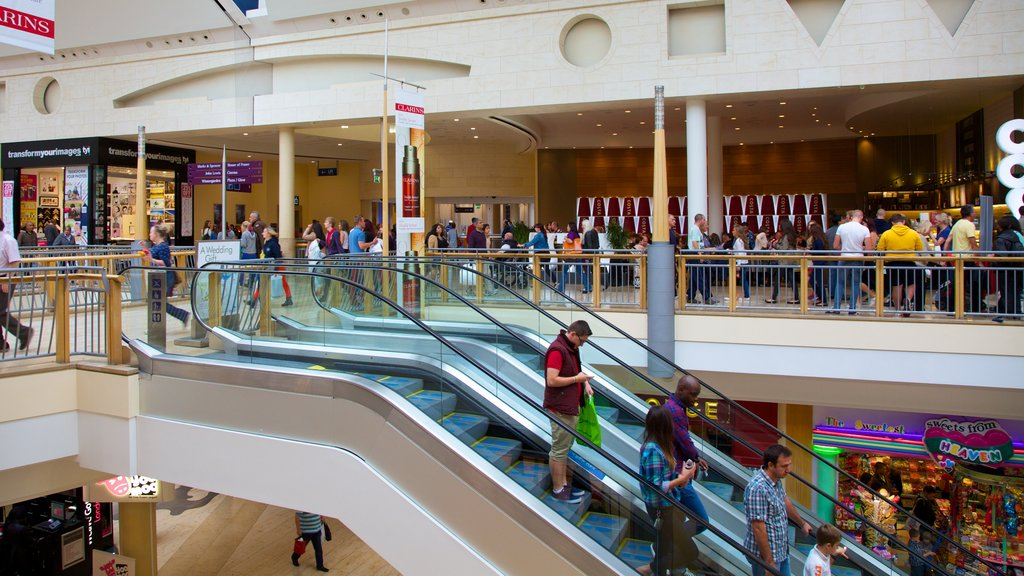 Bluewater Shopping Centre which includes shopping, modern architecture and interior views