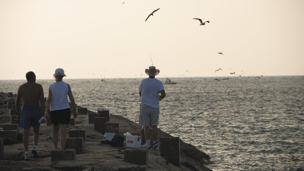 South Padre Island which includes fishing, bird life and a sunset