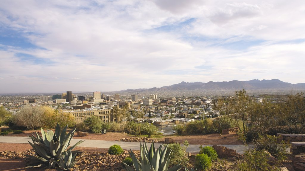 El Paso which includes landscape views, a city and desert views