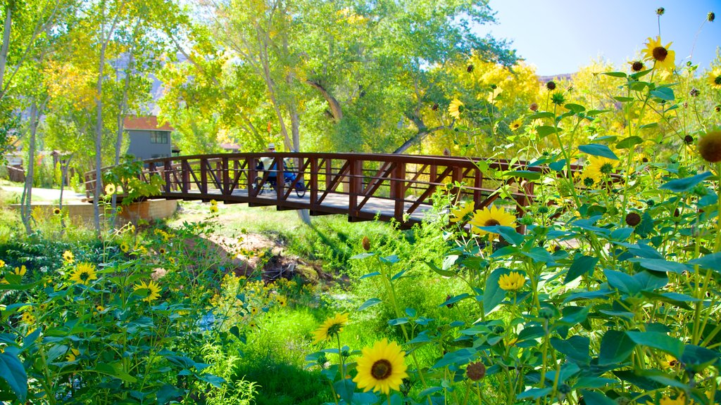 Moab which includes a bridge, a garden and flowers