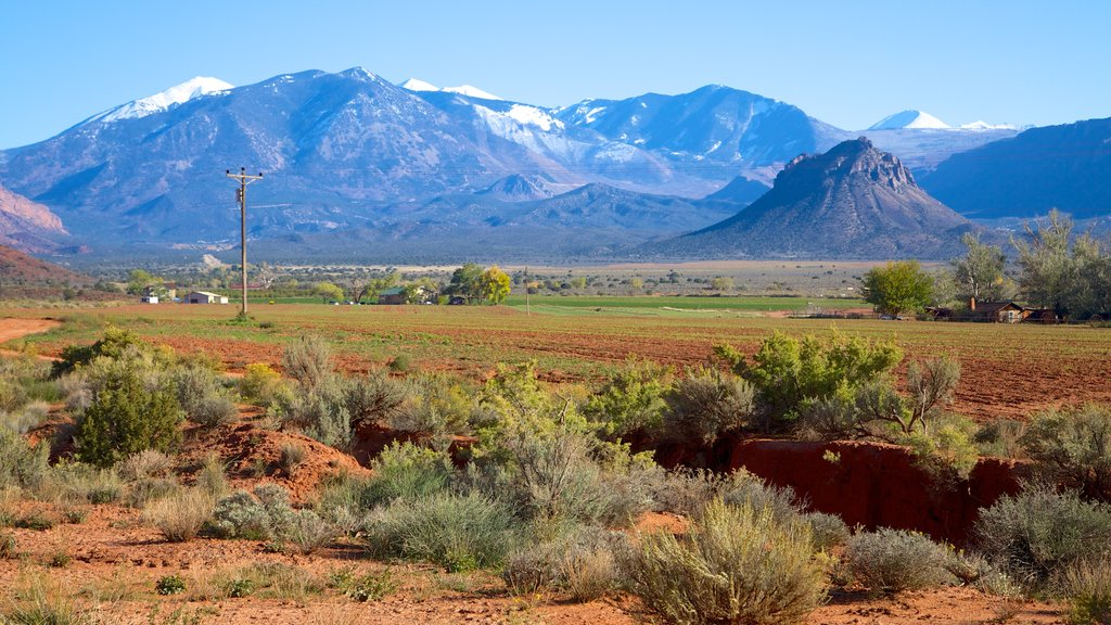 Moab showing landscape views and tranquil scenes