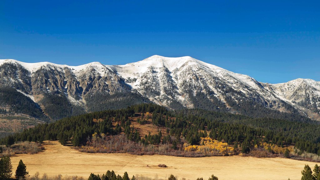 Bozeman which includes mountains, forests and tranquil scenes