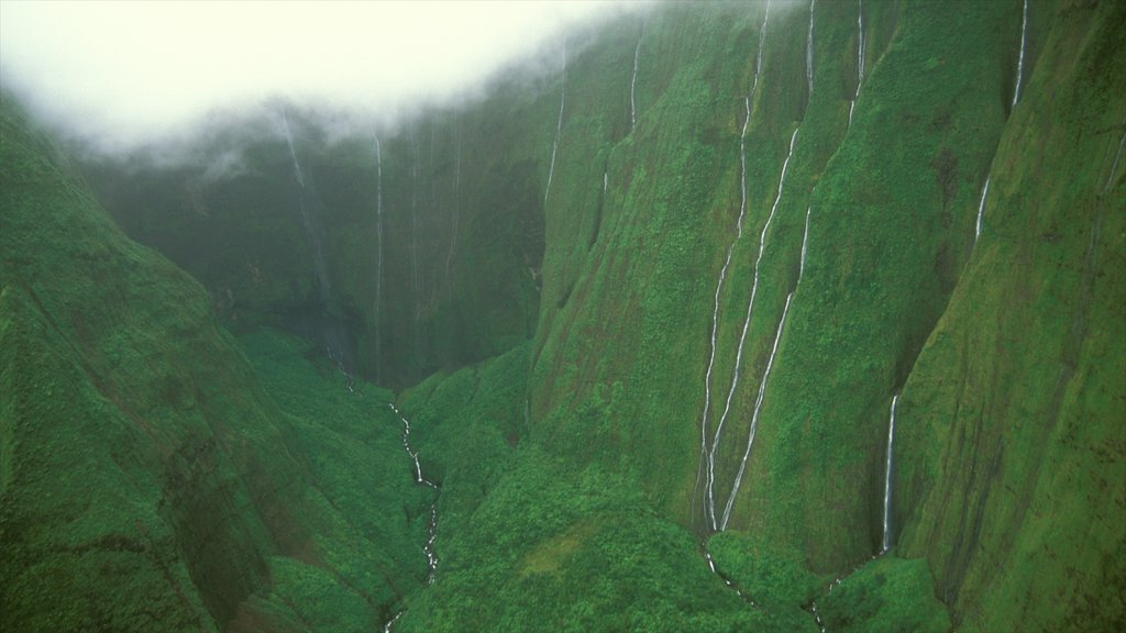 Mt. Waialeale which includes mist or fog, a gorge or canyon and a waterfall