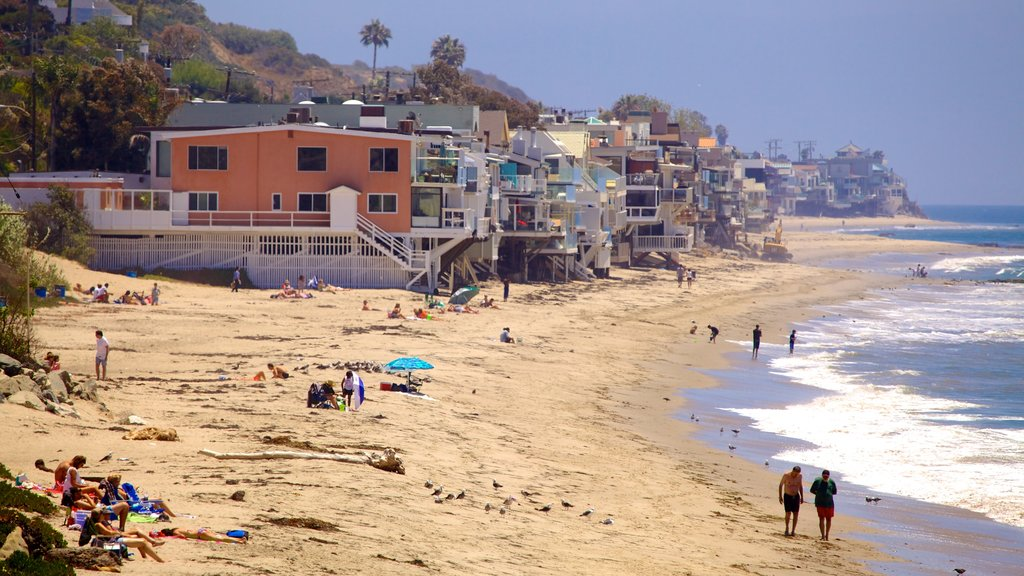 Malibu featuring a beach and a coastal town as well as a large group of people