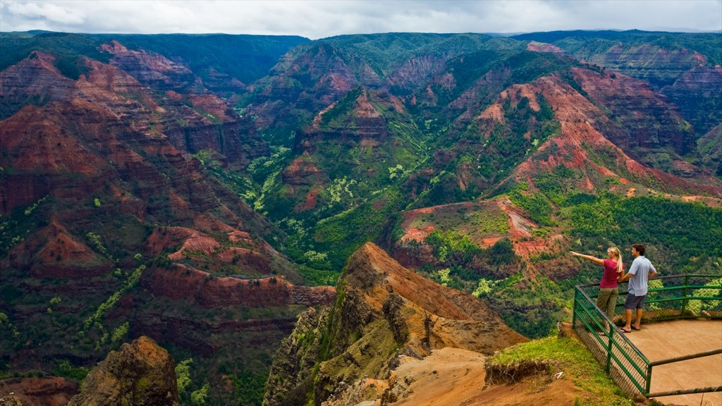 Waimea which includes mountains, a gorge or canyon and views