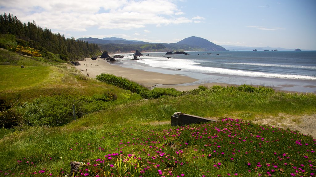 Port Orford which includes a sandy beach, landscape views and general coastal views