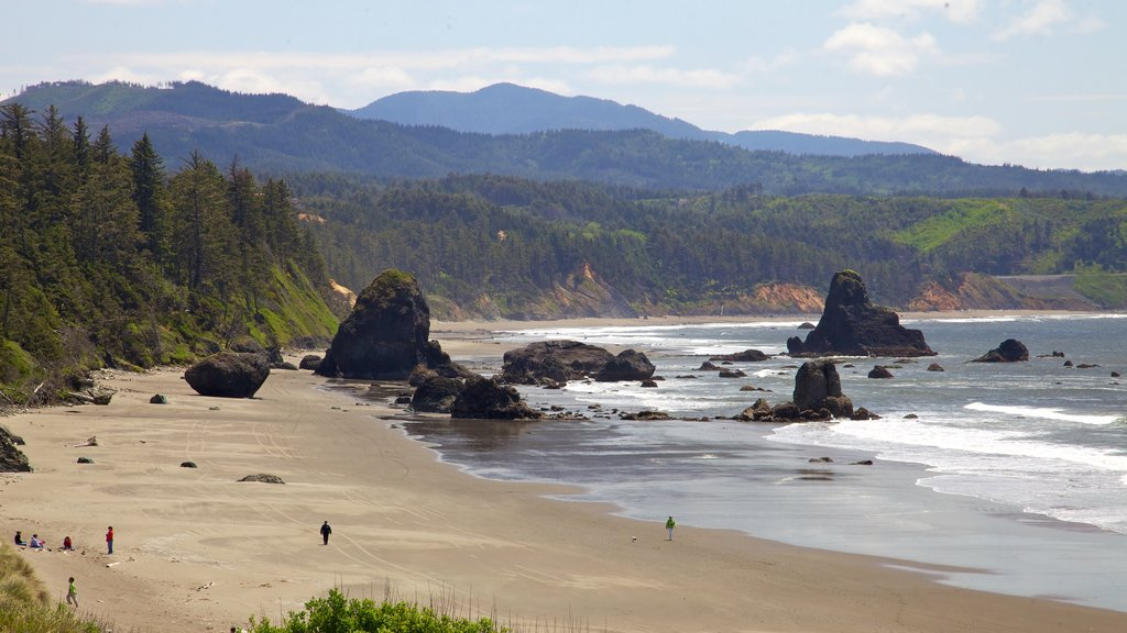 Port Orford showing a sandy beach, general coastal views and landscape views