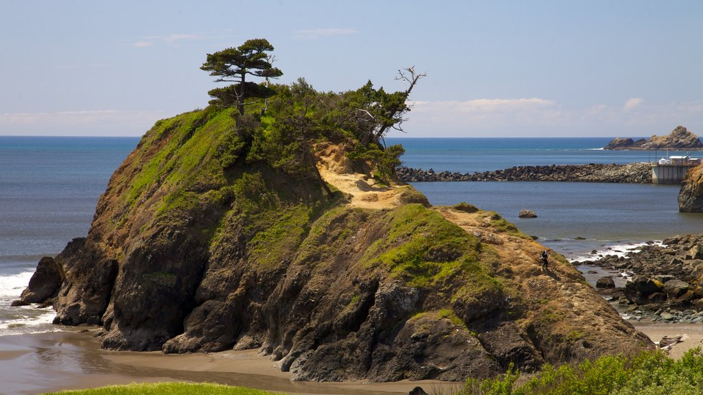 Port Orford which includes landscape views, rocky coastline and a pebble beach