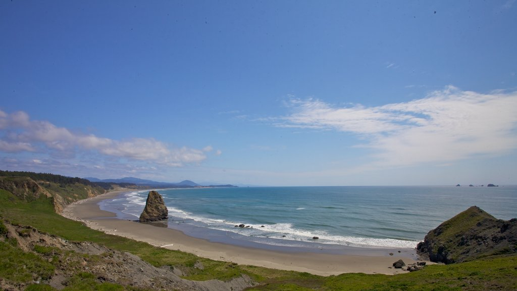 Port Orford featuring a beach and landscape views