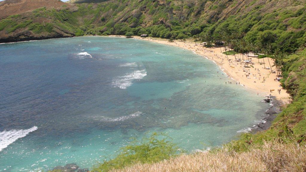 Hanauma Bay Nature Preserve which includes landscape views and a beach