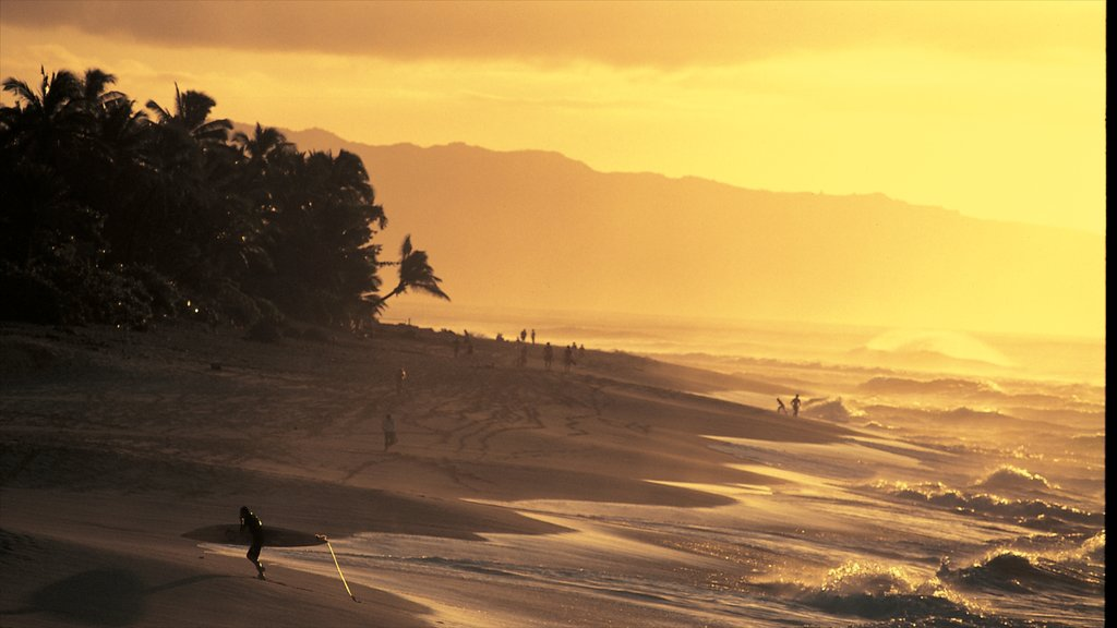 North Shore which includes a sunset, a sandy beach and general coastal views