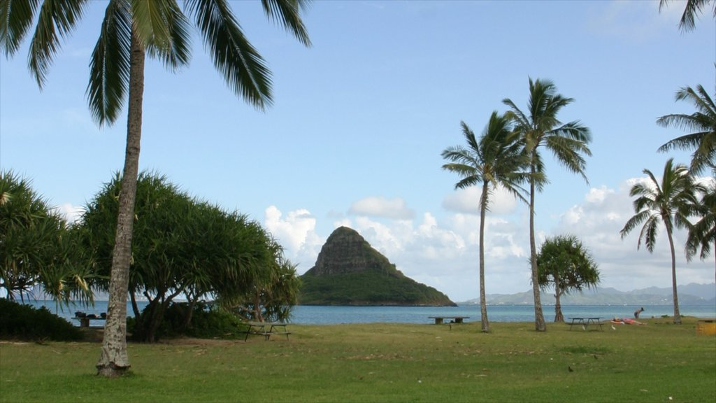 Kualoa Beach Park which includes a park, general coastal views and mountains