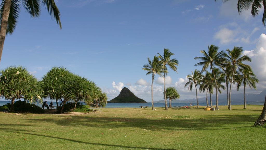 Kualoa Beach Park showing landscape views, a park and tropical scenes