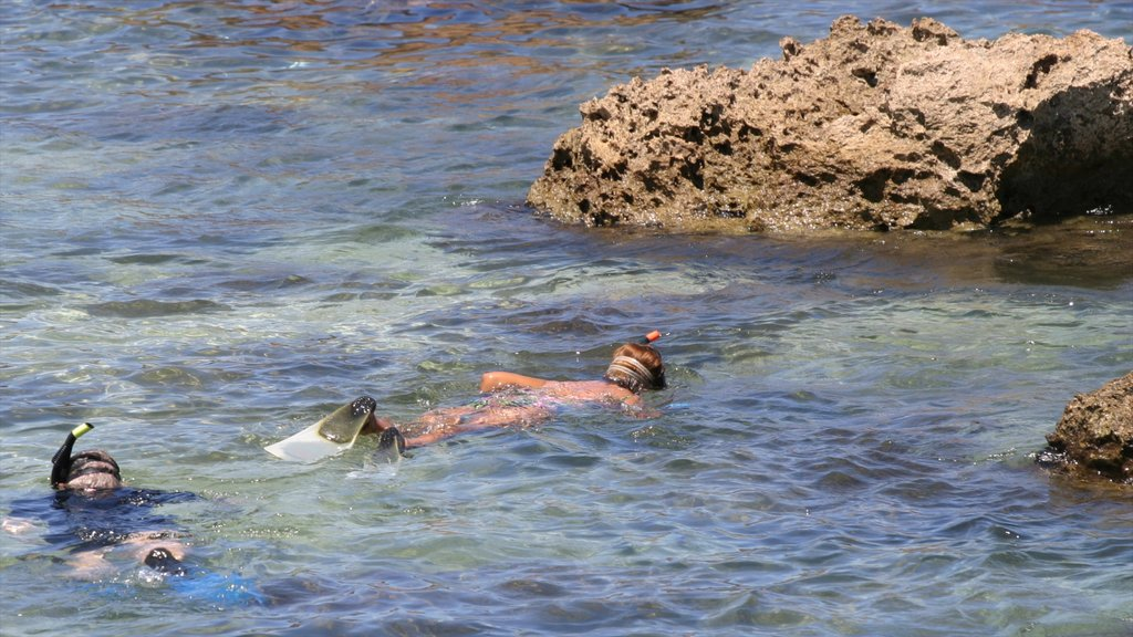 Pupukea Beach Park showing rugged coastline and snorkeling as well as children