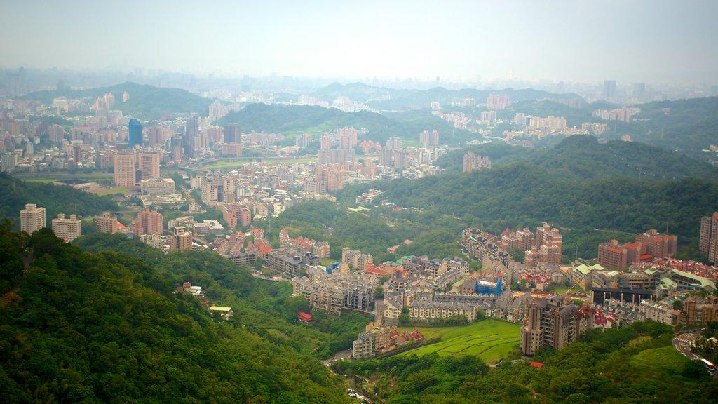 Maokong Gondola featuring a city