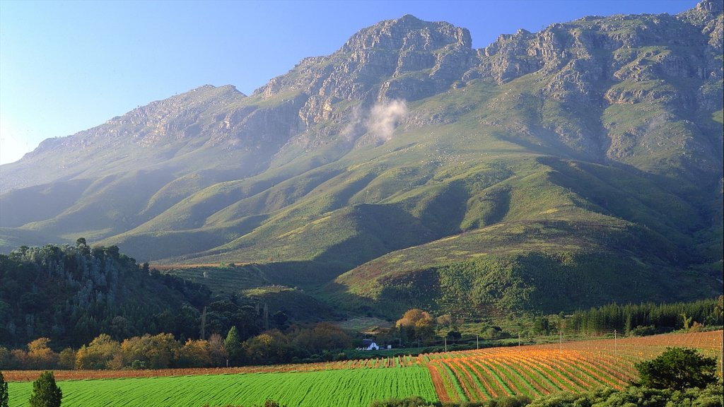 Stellenbosch which includes farmland, mountains and landscape views