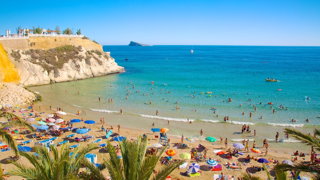 Benidorm which includes swimming and a beach as well as a large group of people