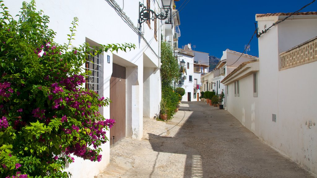 Altea showing flowers, street scenes and a city