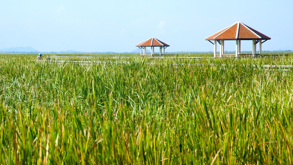 Sam Roi Yot National Park featuring farmland and landscape views