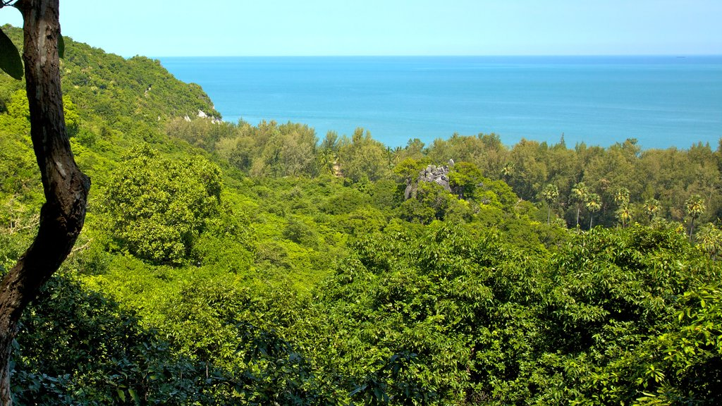Sam Roi Yot National Park featuring forest scenes, landscape views and general coastal views