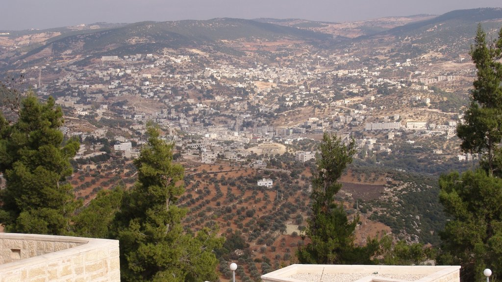 Ajloun featuring tranquil scenes, landscape views and a city