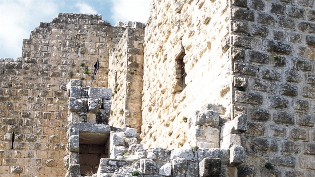 Ajloun Castle which includes building ruins and heritage architecture