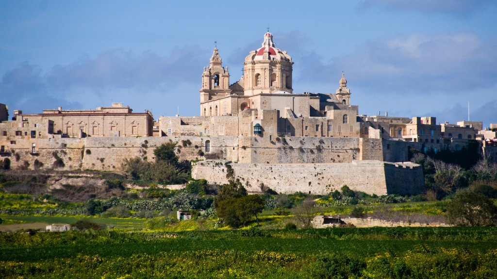 Mdina which includes chateau or palace, heritage elements and a church or cathedral