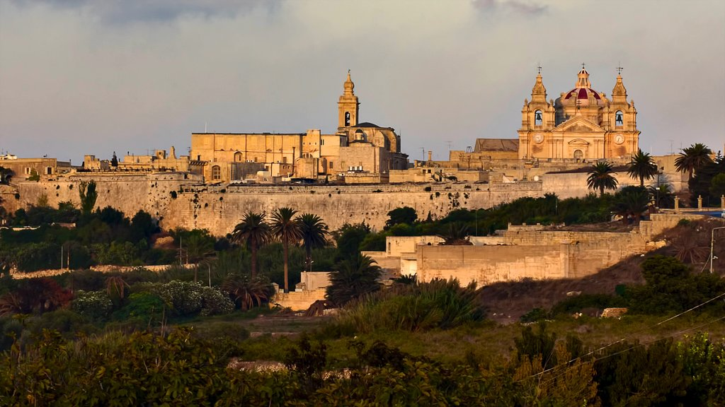 Mdina which includes heritage elements, a castle and a church or cathedral