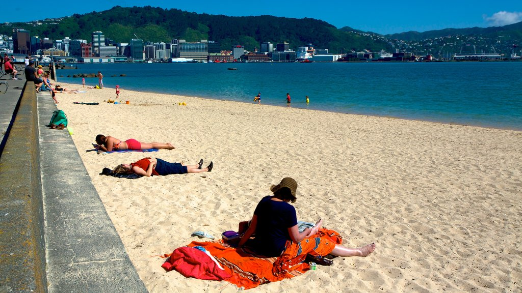 Oriental Bay Beach featuring a coastal town, a sandy beach and general coastal views