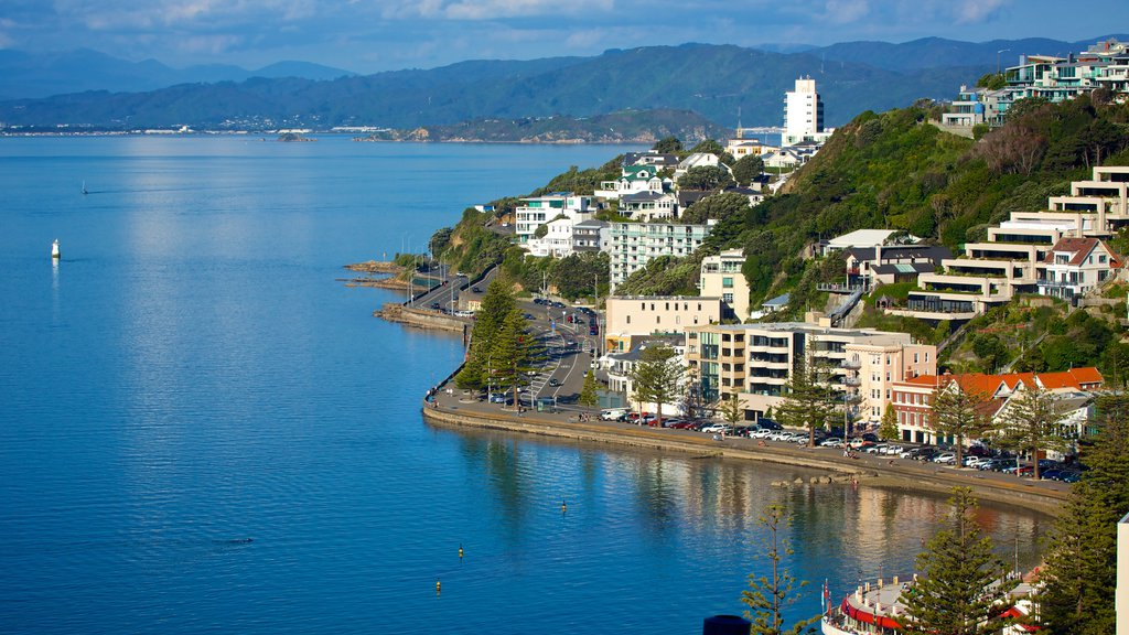 Oriental Bay Beach featuring a coastal town and a bay or harbor