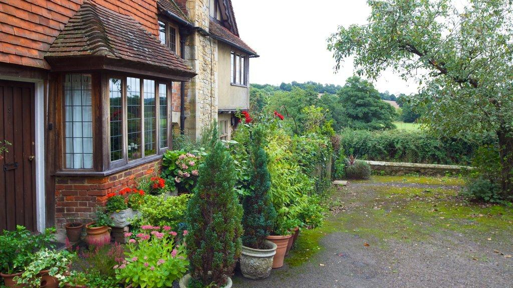 Tonbridge showing a house and a park