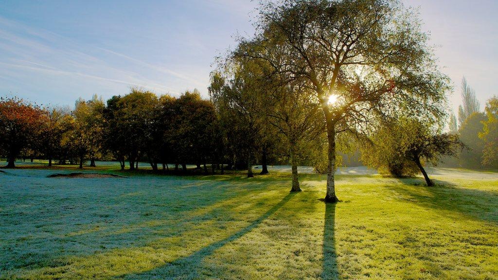Riverside Park showing a sunset, a garden and landscape views