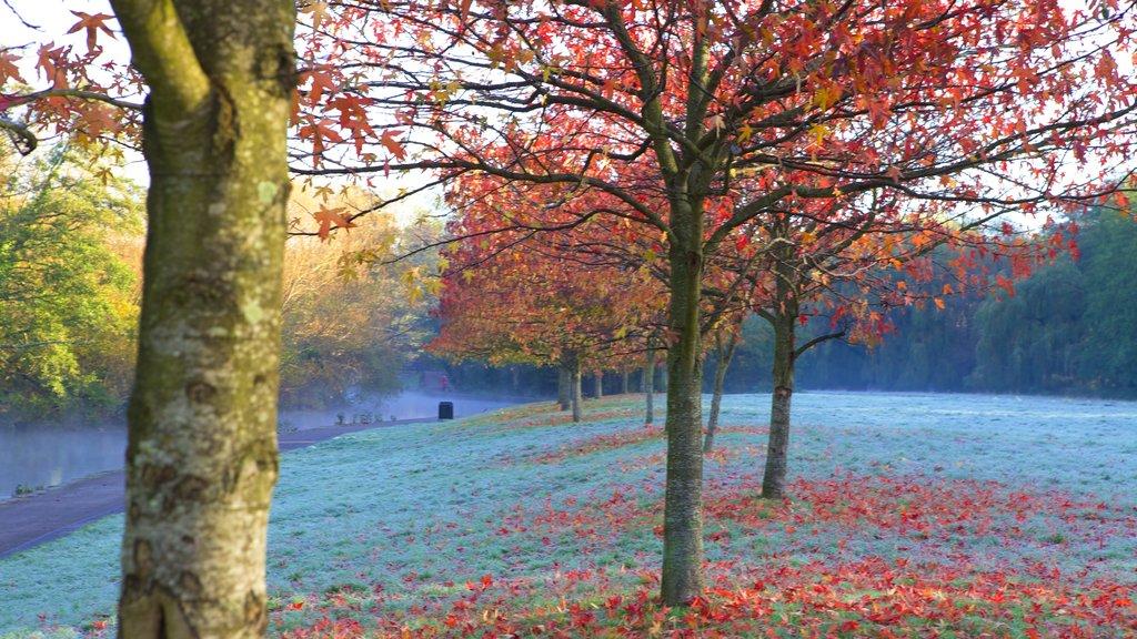 Riverside Park ofreciendo un jardín y los colores del otoño