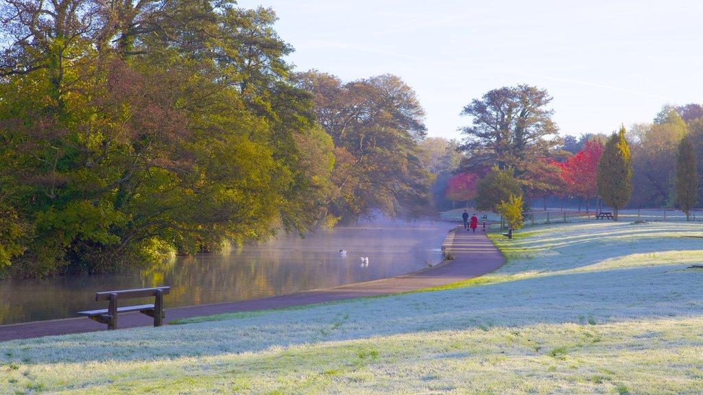 Riverside Park que incluye neblina o niebla, un jardín y los colores del otoño