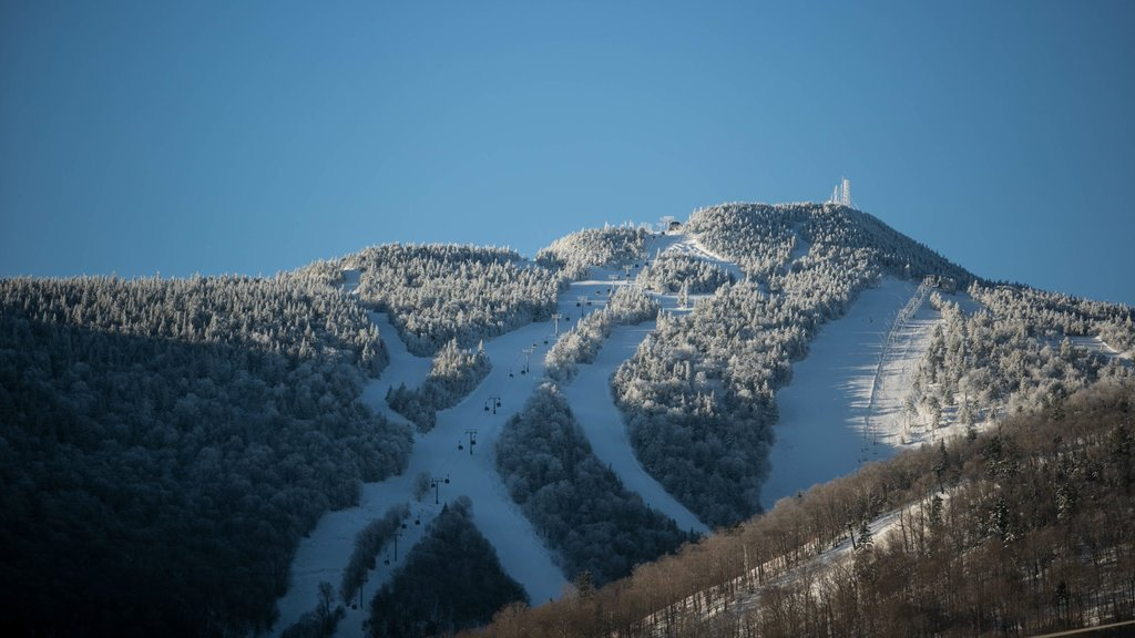 Killington Ski Resort showing snow, mountains and forest scenes