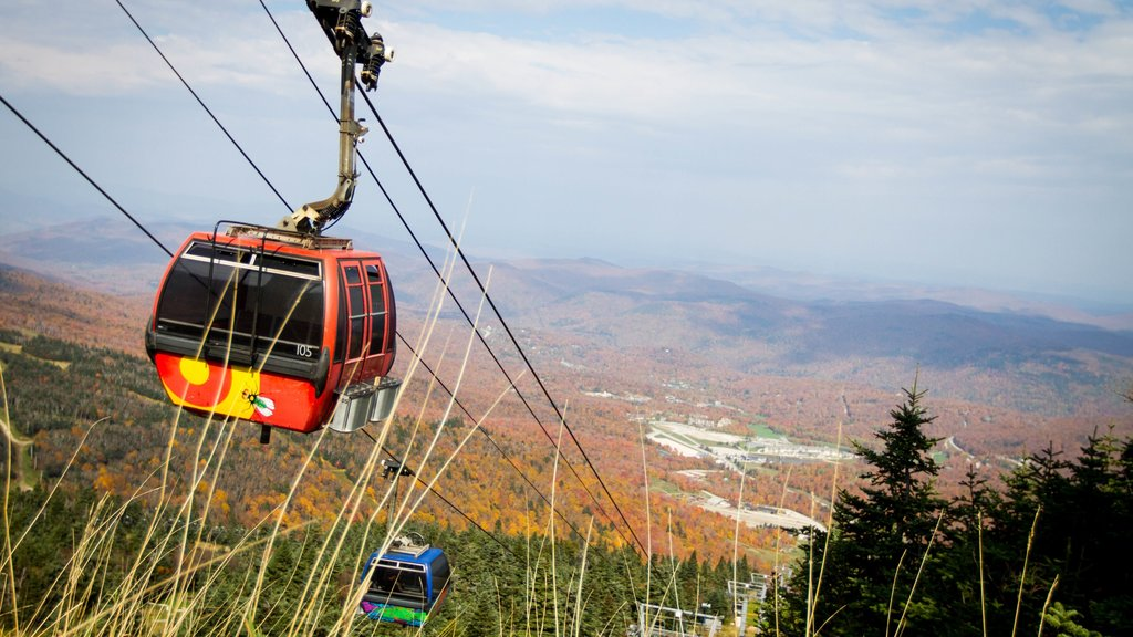 Killington Ski Resort showing autumn leaves, a gondola and forest scenes