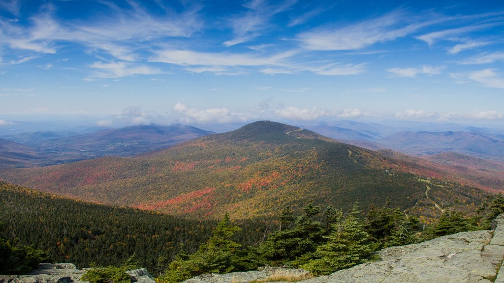 Killington which includes fall colors, forest scenes and landscape views
