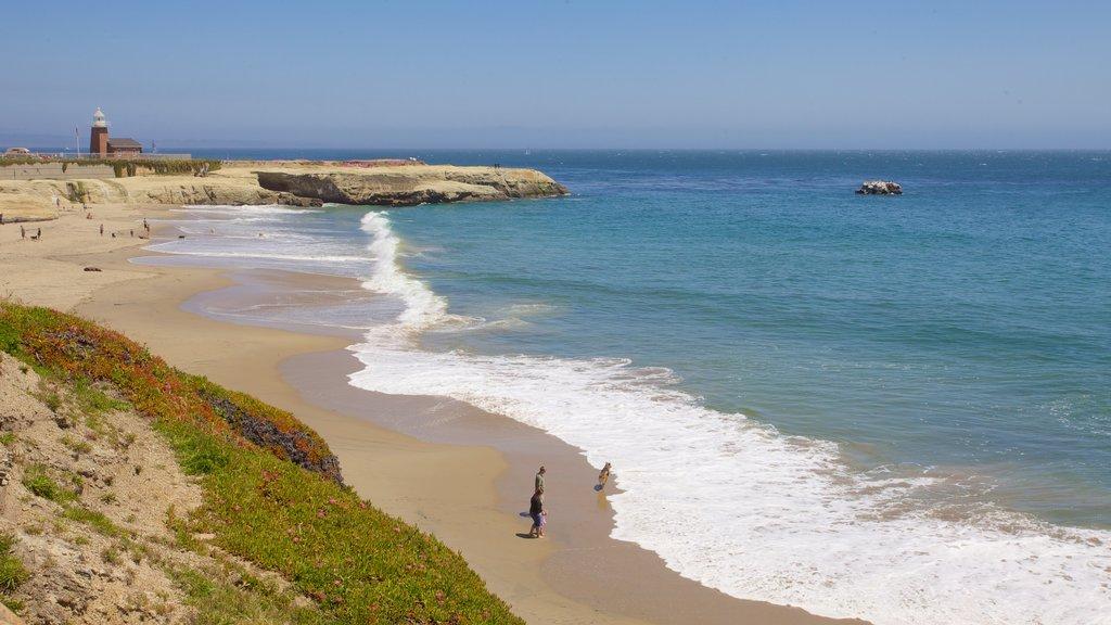 Santa Cruz que incluye vistas generales de la costa, una playa de arena y costa rocosa