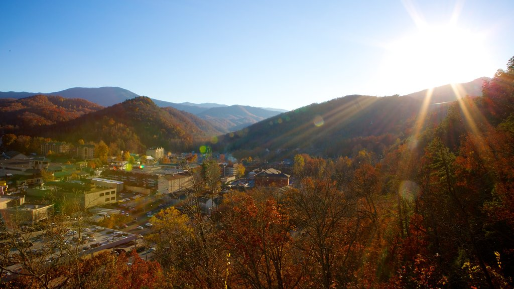 Gatlinburg showing landscape views and autumn leaves