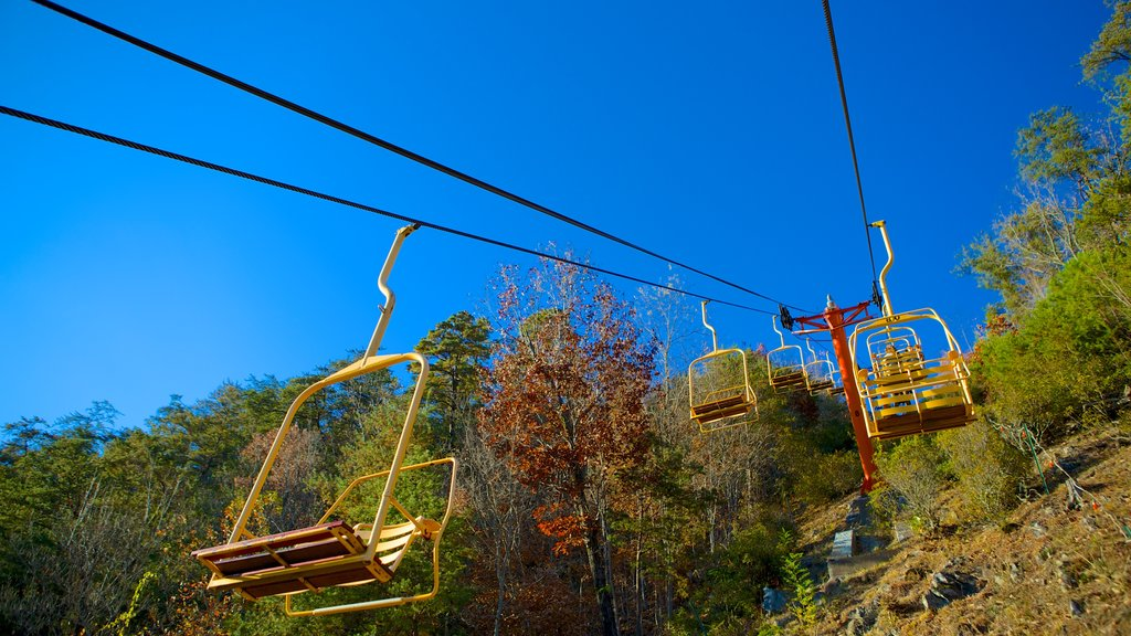 Gatlinburg Sky Lift featuring forests and a gondola