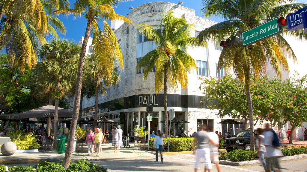 Lincoln Road Mall which includes street scenes, tropical scenes and a city