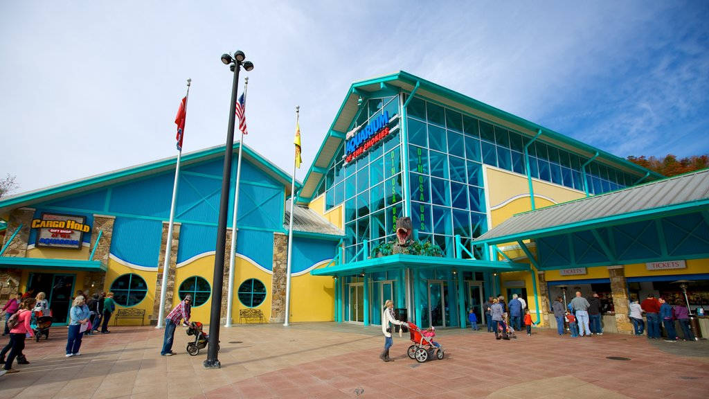 Ripley\'s Aquarium of the Smokies showing modern architecture and marine life