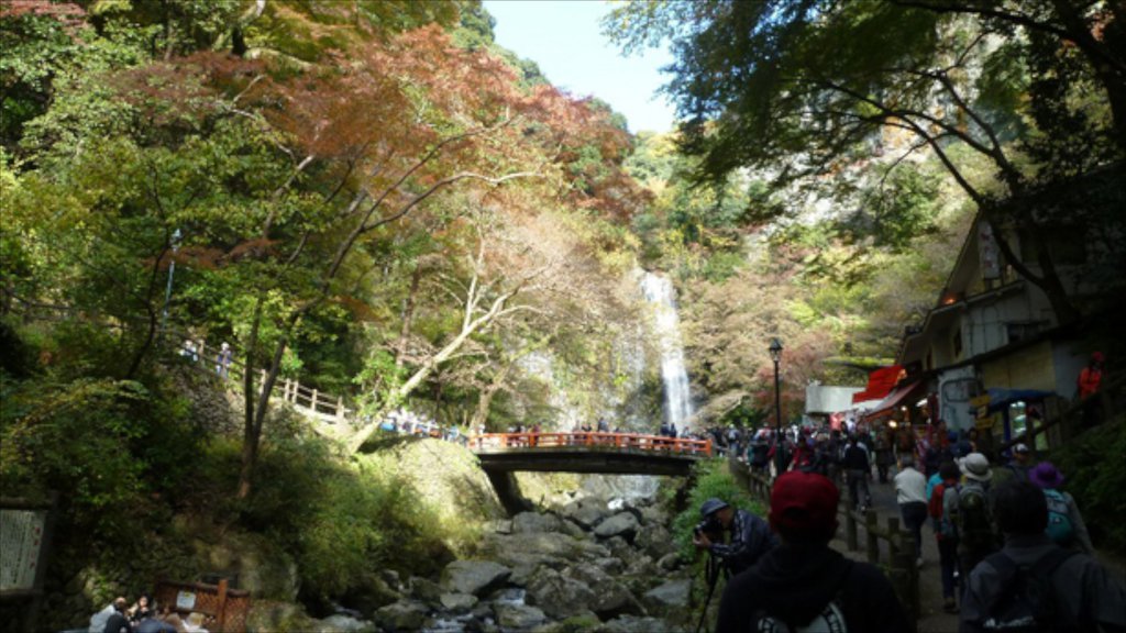 Minoh which includes a cascade, a bridge and forests