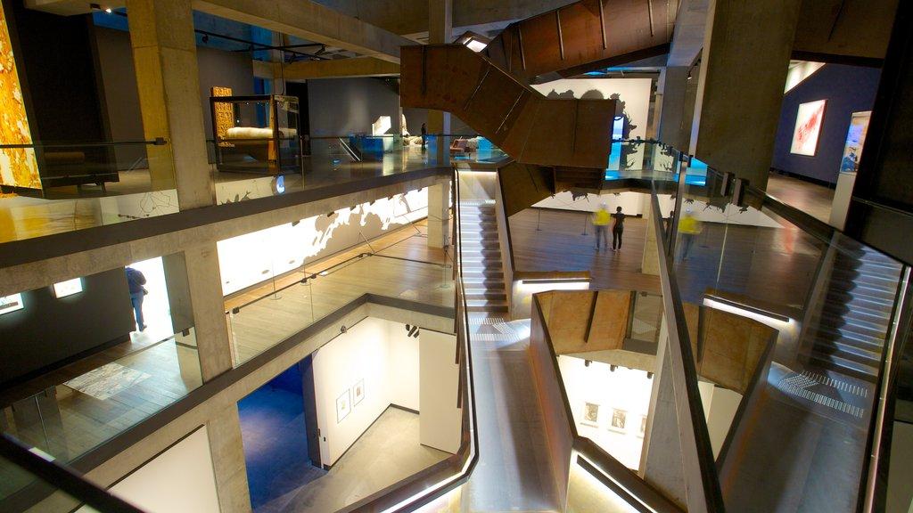Museo de Arte Antiguo y Contemporáneo mostrando arquitectura moderna y vistas interiores