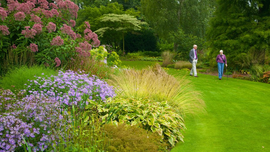 Beth Chatto Garden which includes a garden and flowers as well as a couple